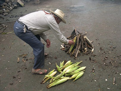 Meanwhile Ceci's father gathers firewood and corn cobs to roast ears of corn in the husk