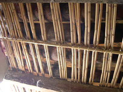 Inside, the ceiling is supported by reedy stems.