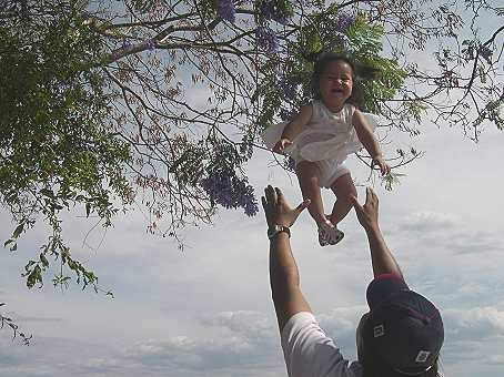 What a wonderful day!  Montse flies up into a Jacaranda tree.