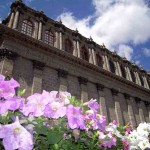 Giant petunias and Teatro Degollado