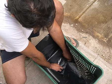 Omar lines the milk crate with heavy black plastic
