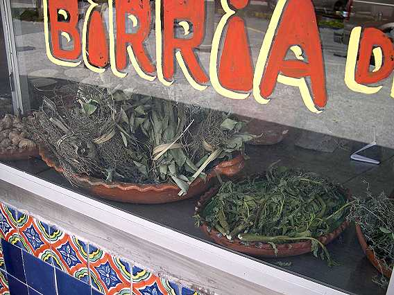 Several of the herbs used to make birria.