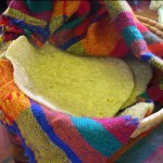 Tortillas are 6 to 9 pesos a kilo (2.2 pounds).  They make up a big part of our diet.