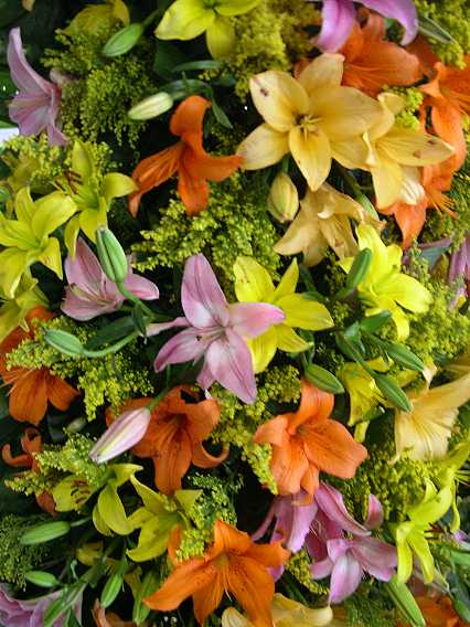 Floral offerings.  Although these lilies are beautiful. roses are the most popular offering, due to their significance in the story of the Virgin of Guadalupe.