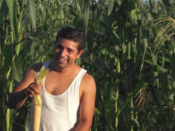 Pablo with fresh corn.
